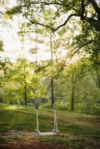 Empty tree swing on a county hill