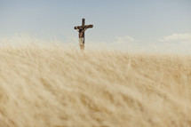 Jesus hanging on a cross in a field