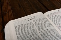Scripture Titles - John