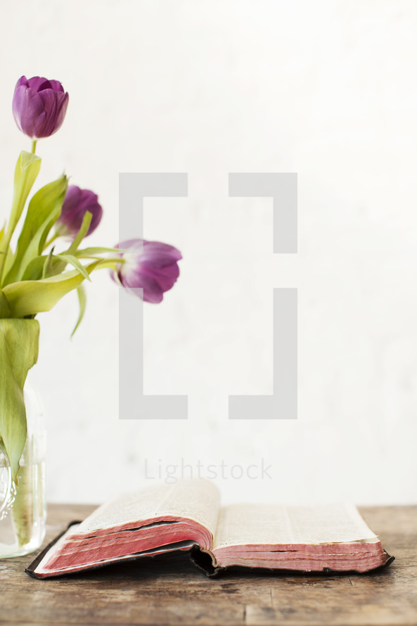 Tulips with a Bible on a wood table.