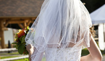 brides veil from behind