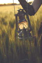 lantern in a wheat field