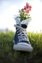 Tennis shoe flower pot