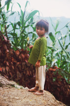 young girl standing in a field of corn