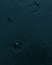 water droplets on water surface