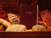 man does not live on bread alone, but on every word that comes from the mouth of God - matthew 4,4,  bread, word, bible, food, alone, gods word, our daily bread, scripture, eat, eating, mouth, matthew, red, bun, feed, nourish, nurturing, subsist, holy, book, daily
