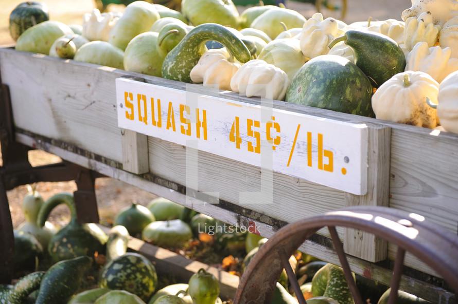 squash in a wagon