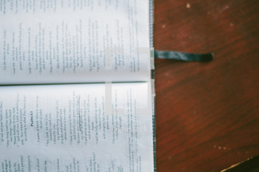 pages of a Bible