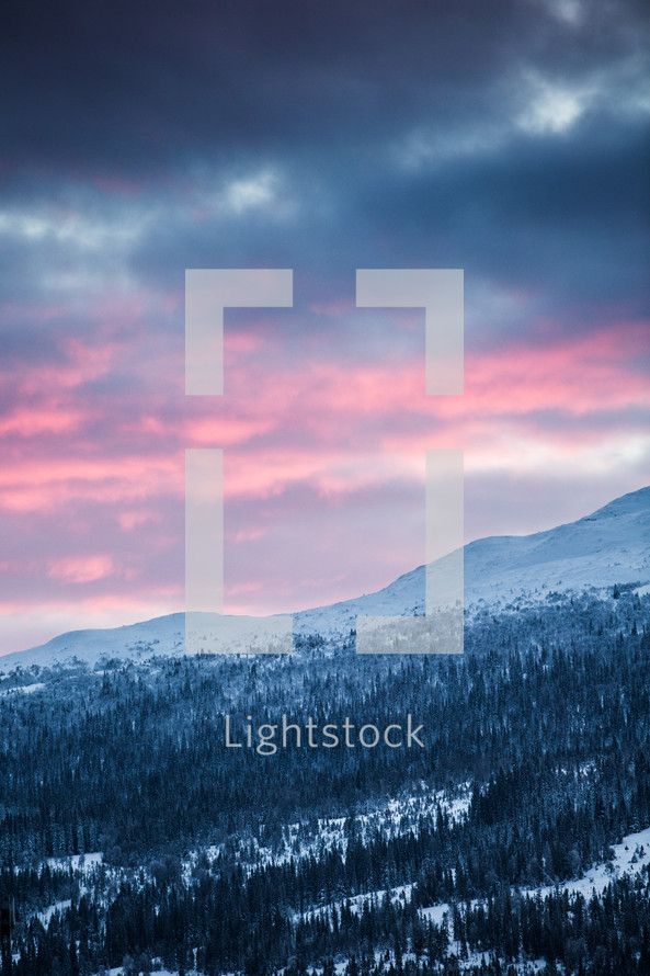 pink sky over a winter mountain forest