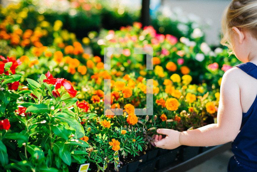 girl child picking out flowers in a garden center