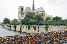 love locks on a fence and Notre Dame in Paris