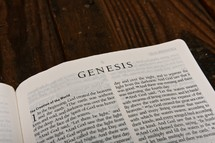 Scripture Titles - Genesis