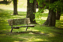 weathered park bench under trees