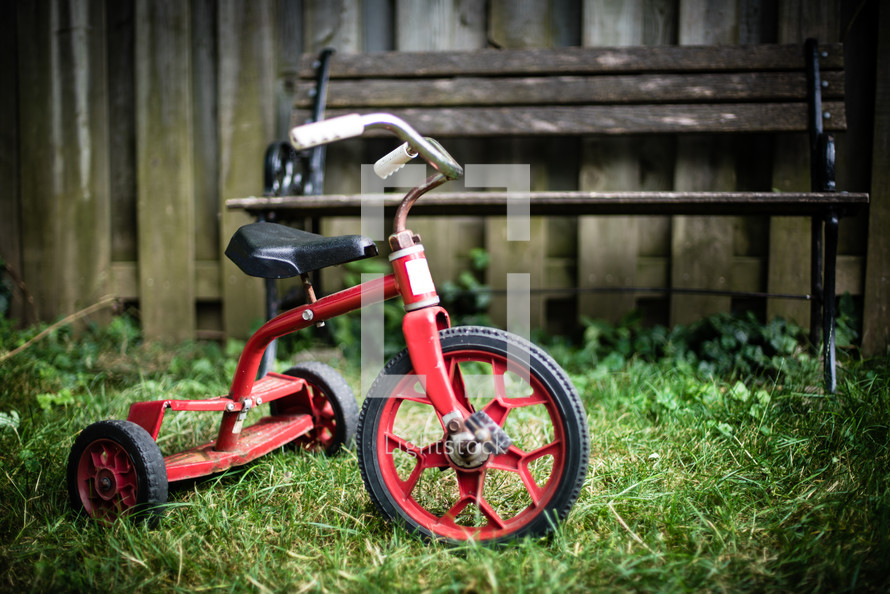 tricycle on a lawn