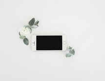 cellphone and flowers on white background