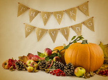 Thanksgiving scene and pumpkins and pine cones