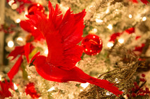 red bird Christmas ornament in a Christmas tree