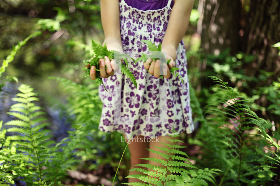 A little girl in a dress with hands full of fern leaves.