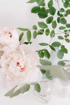 peonies and green leaves