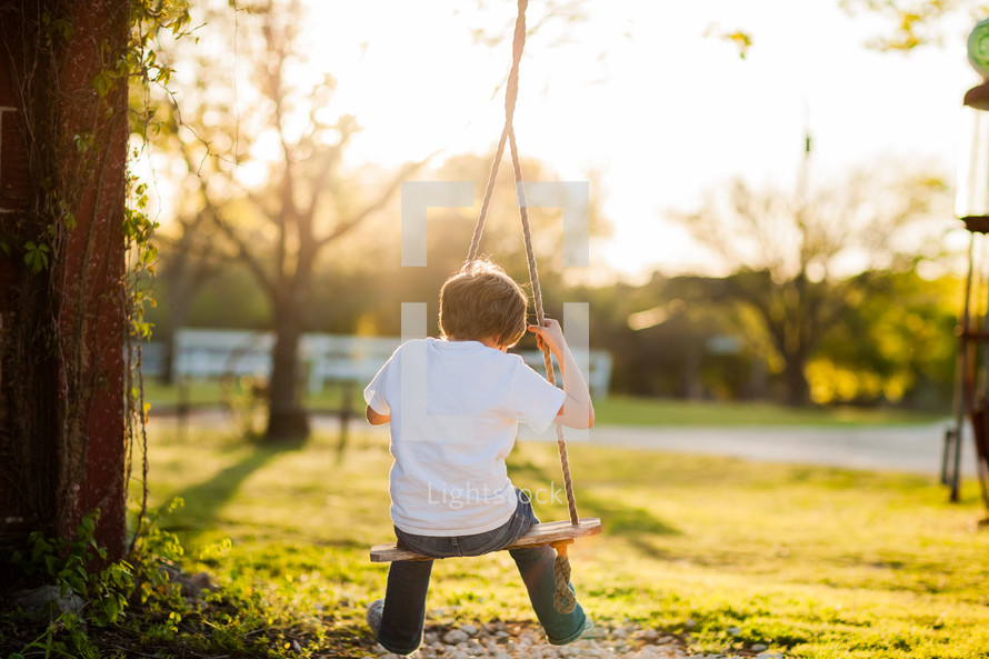 Boy  young child on tree swing in the country on a farm at sunset