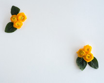 yellow roses in corners