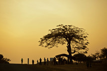 Silhouettes of people under a tree in Malawi, Africa.