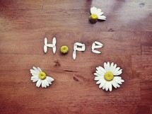 hope in daisy petals