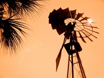 silhouette of a windmill and palm fronds at sunset against an orange sky at sunset.