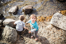 children looking for shells along a shore