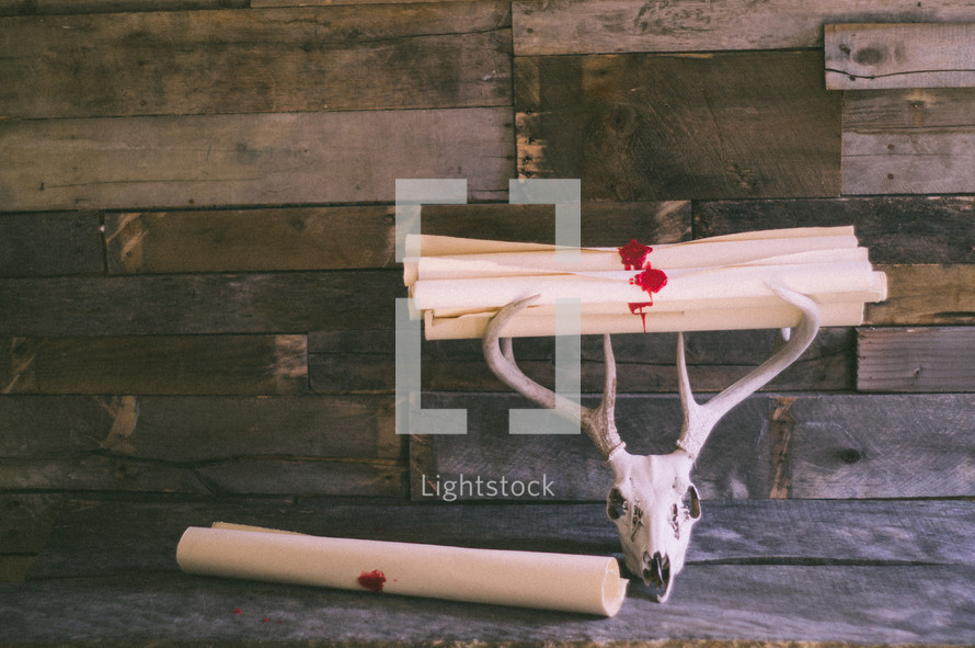 scroll and wax seal and deer skull