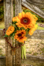 sunflowers in a chain on a locked gate