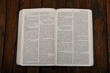 Scripture Titles - 1 Corinthians