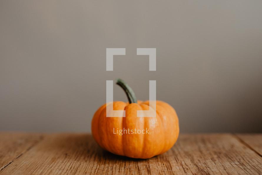 one little pumpkin on table