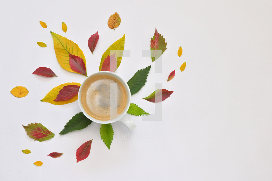 coffee cup surrounded by fall leaves
