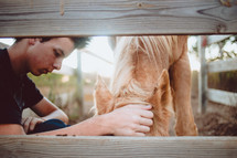 a teen boy petting a horse
