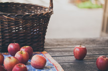 a basket and fresh picked apples