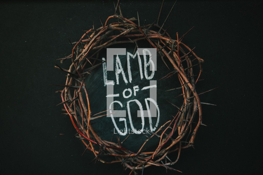 crown of thorns and the words lamb of god