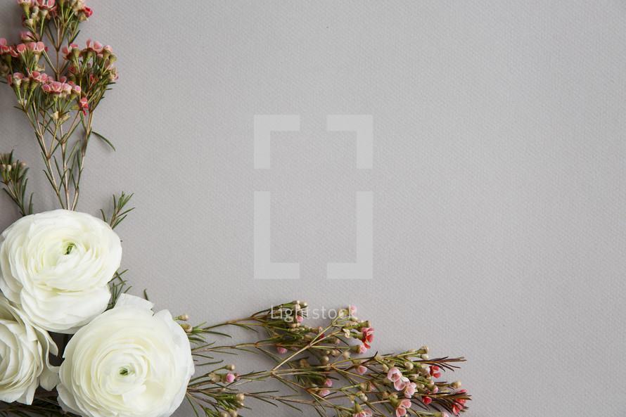 flowers in a corner