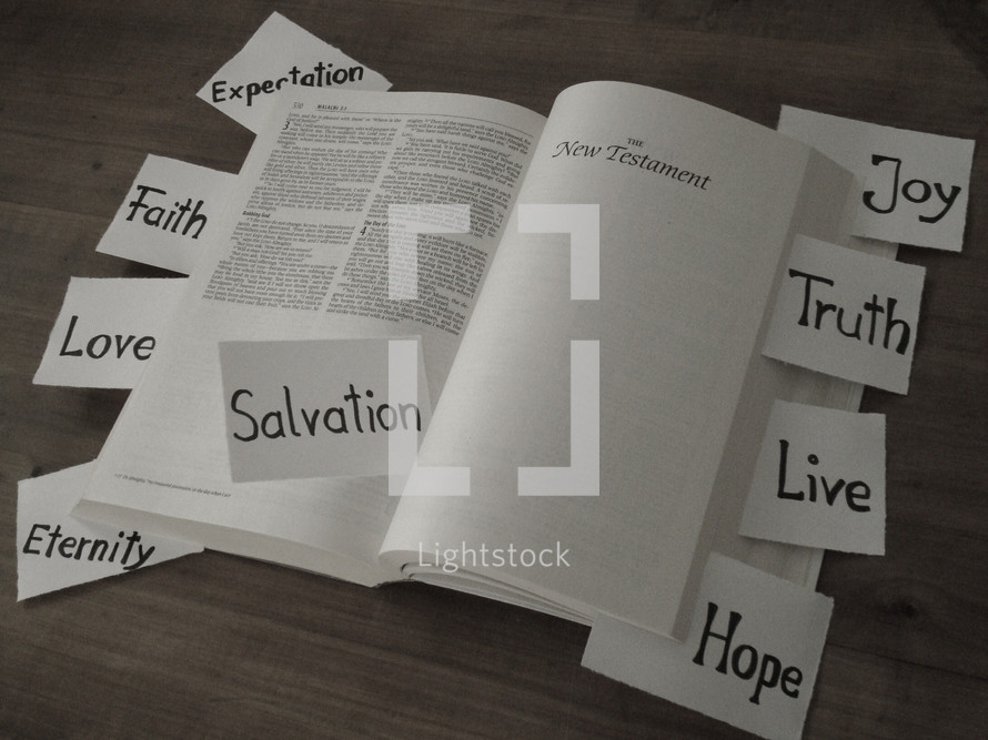 what you can find in the bible,  bible, holy, book, scripture, salvation, hope, love, faith, truth, eternity, life, live, joy, expectation, testament, new, old, malachi, find, finding, detect