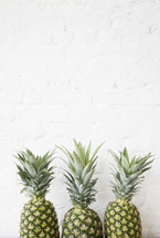 row of three pineapples