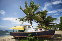 Houseboat on beach with palm trees.