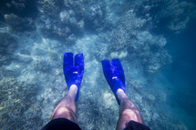 flippers on a scuba diver