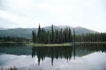 trees along a lake shore and reflection