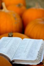 a Bible on pumpkins in a pumpkin patch