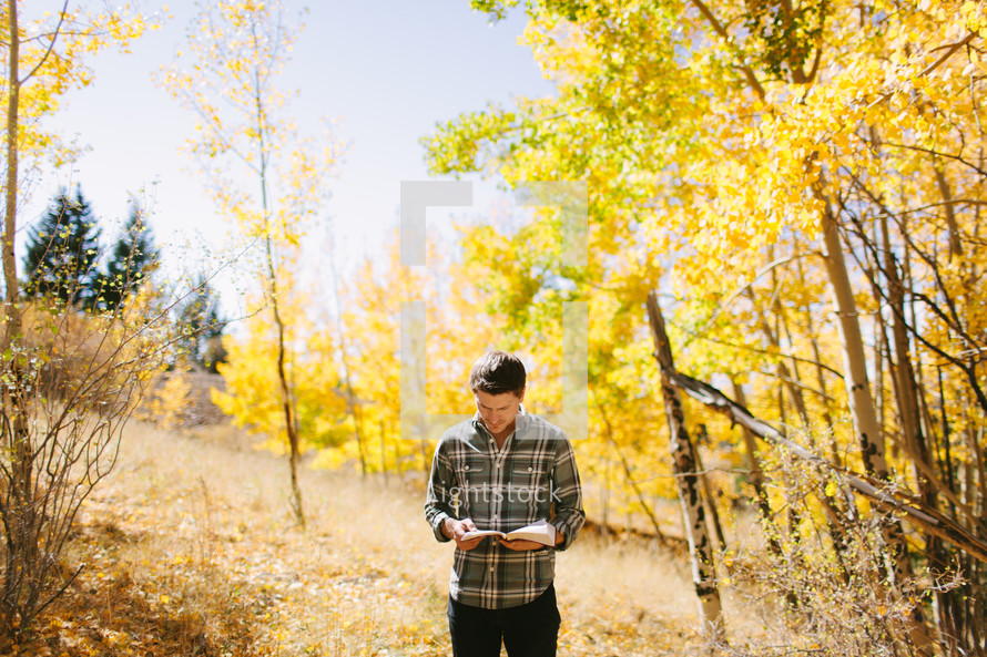 a man standing alone in a forest reading a Bible on a fall day