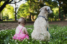 infant and dog sitting in the grass
