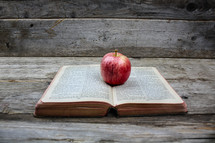 apple on a Bible