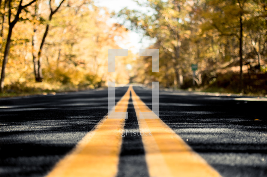 center lines on a road
