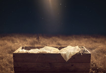 Star light shining on the manger