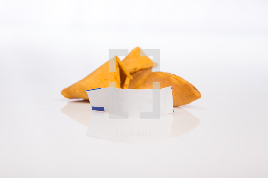 blank fortune out of a fortune cookie